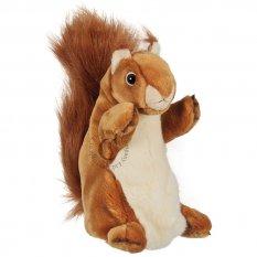 Wiewiórka długa pacynka